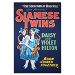 Oversized Vintage Poster - Siamese Twins