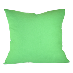 Kelly Green Pillow