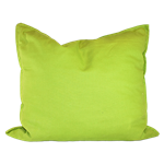 Lime Green Canvas