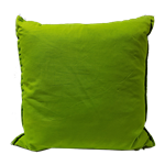 Pear Green Pillow
